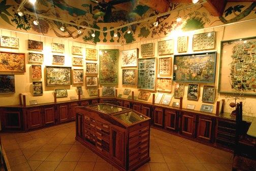 El Museo de las Mariposas en Saint-Tropez