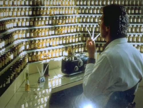 Grasse y el Museo de la Perfumeria