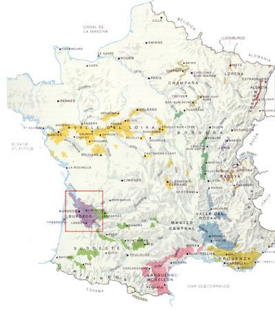 zonas-vinicolas-en-francia