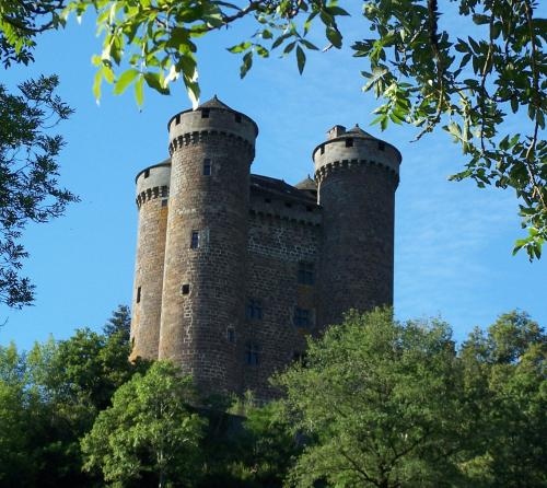 El castillo de Anjony