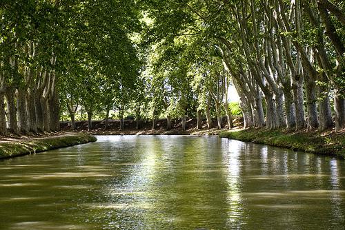 Cruceros por el Canal du Midi