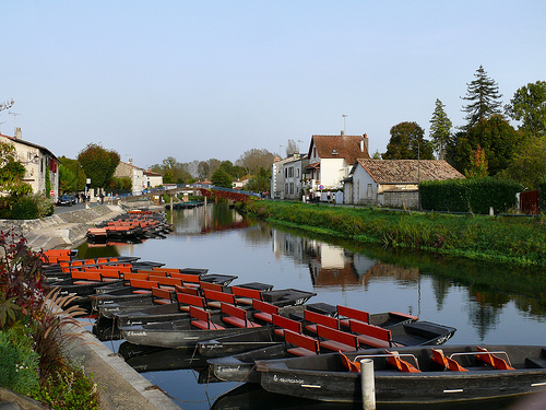 Las marismas de Poitou, visita imprescindible