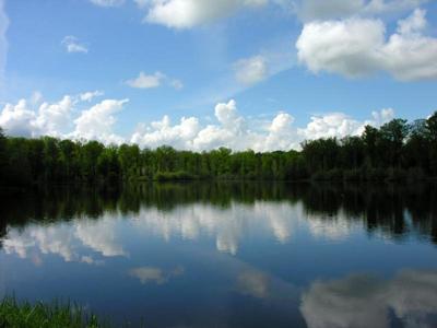 El Lago del Der en Champaña